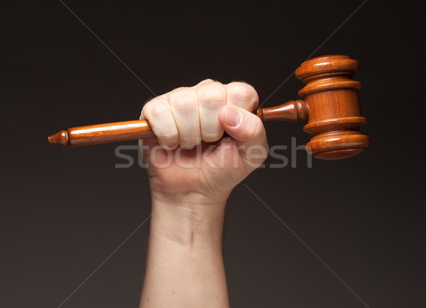 Male Fist Holding Wooden Gavel Stock photo © feverpitch