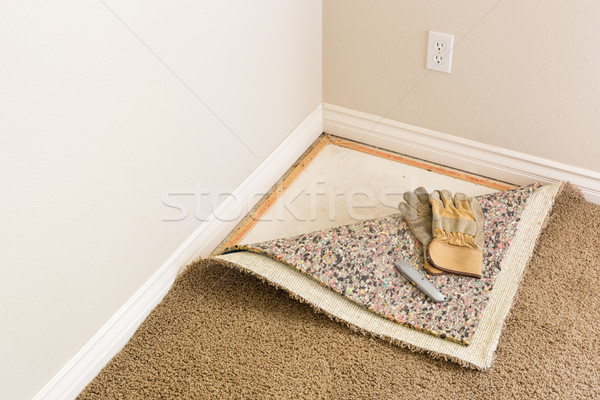 Gloves and Utility Knife On Pulled Back Carpet and Pad In Room. Stock photo © feverpitch