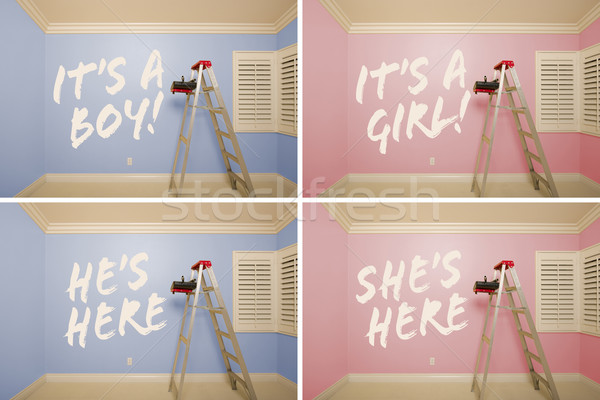Maternity Series of Pink And Blue Empty Rooms Stock photo © feverpitch