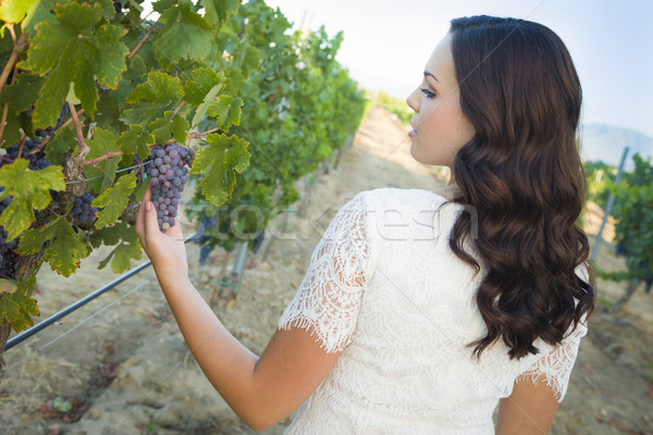Young Adult Woman Enjoying The Wine Grapes in The Vineyard Stock photo © feverpitch