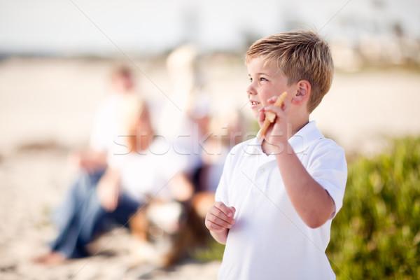 Zdjęcia stock: Cute · mały · chłopca