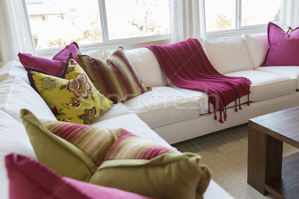 Abstract of Inviting Colorful Couch Sitting Area Stock photo © feverpitch