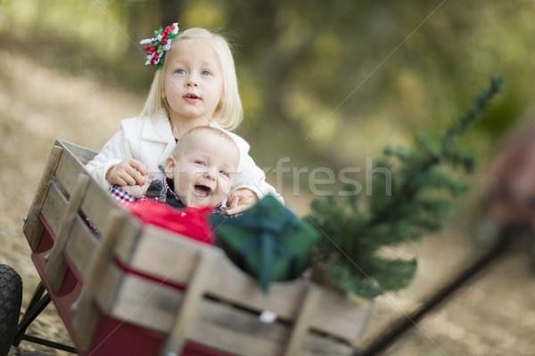 Stockfoto: Baby · broer · zus · kerstboom · geschenken