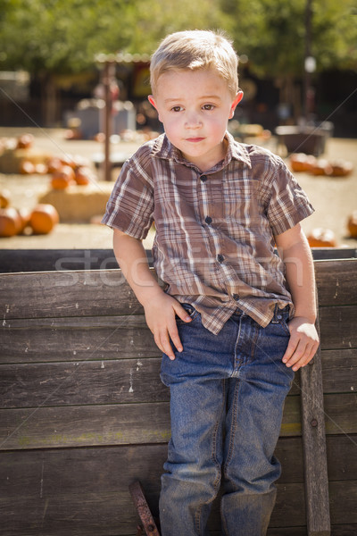 Little Boy With Hands in His Pockets at Pumpkin Patch Stock photo © feverpitch