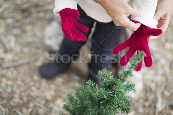 Mother Putting Red Mittens On Child Stock photo © feverpitch