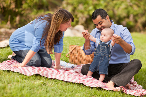 Happy Mixed Race Family Playing In The Park Stock photo © feverpitch