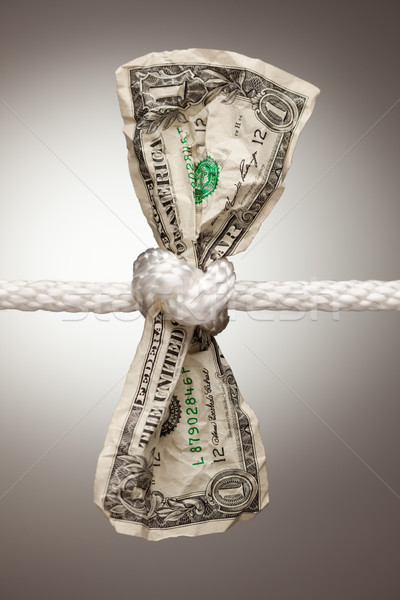 American Dollar Tied in Rope Stock photo © feverpitch