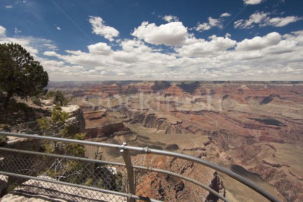 Beautiful Grand Canyon Landscape View Tourist Railing Stock photo © feverpitch