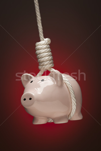 Piggy Bank Hanging in Hangman's Noose on Stock photo © feverpitch