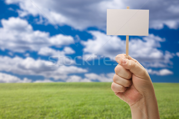 Blank Sign in Fist Over Grass Field and Sky Stock photo © feverpitch