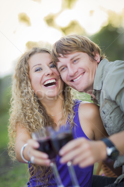 An Attractive Couple Enjoying A Glass Of Wine in the Park Stock photo © feverpitch