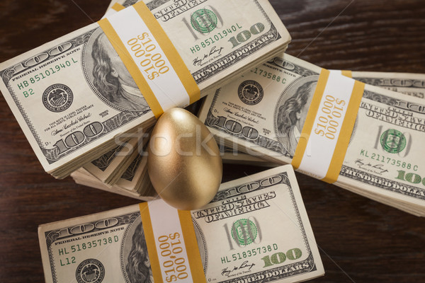 Golden Egg and Thousands of Dollars Surrounding Stock photo © feverpitch