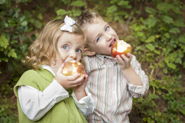 Adorable Brother and Sister Children Eating Apples Outside Stock photo © feverpitch