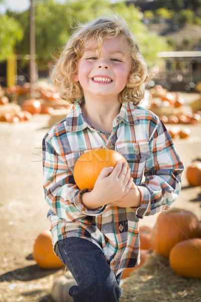 Little Boy Holding His Pumpkin at a Pumpkin Patch Stock photo © feverpitch