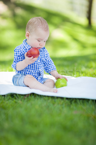 Mixed Race Infant Baby Boy Sitting on Blanket Comparing Apples t Stock photo © feverpitch