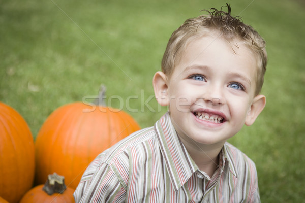 Cute Young Child Boy Enjoying the Pumpkin Patch. Stock photo © feverpitch
