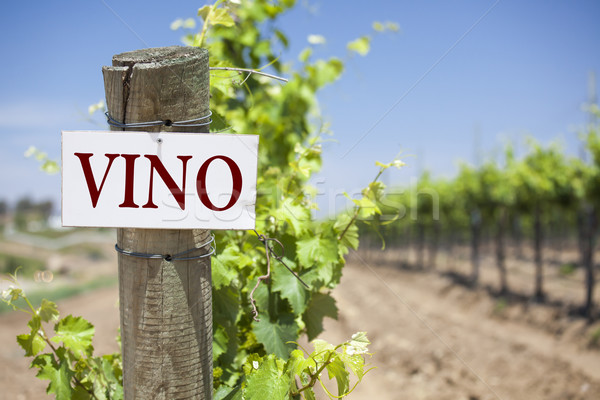 Vino Sign On Vineyard Post Stock photo © feverpitch