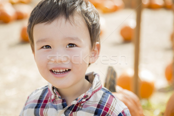 Mixed Race Young Boy Having Fun at the Pumpkin Patch Stock photo © feverpitch