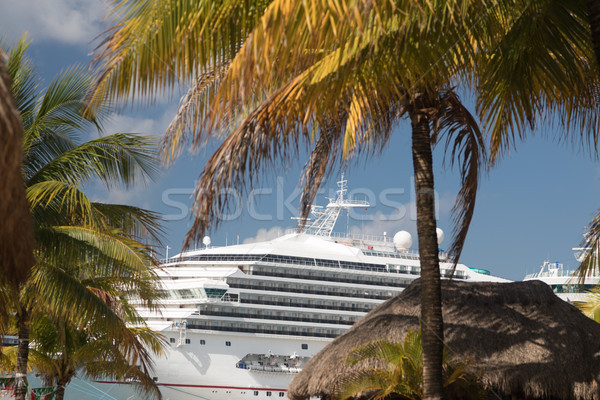 Cruise Ships Docked at Tropical Port of Call Stock photo © feverpitch