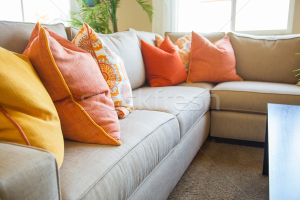 Abstract of Inviting Colorful Couch Sitting Area in House Stock photo © feverpitch