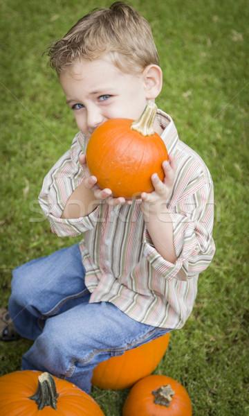 Cute Young Child Boy Enjoying the Pumpkin Patch. Stock photo © feverpitch