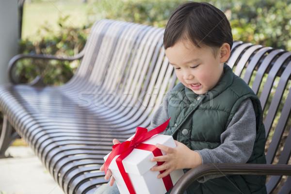 Сток-фото: мальчика · открытие · Рождества · подарок · улице