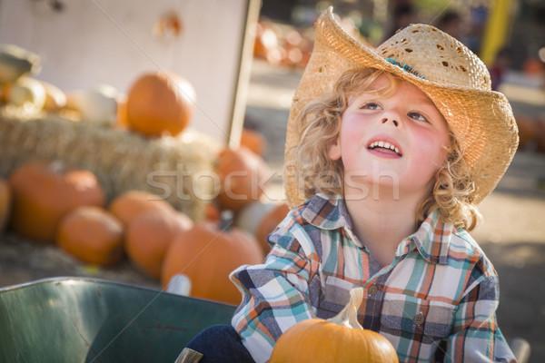 Piccolo ragazzo cappello da cowboy zucca adorabile Foto d'archivio © feverpitch