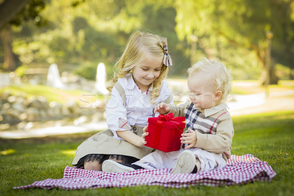 Meisje baby broer geschenk park zoete Stockfoto © feverpitch
