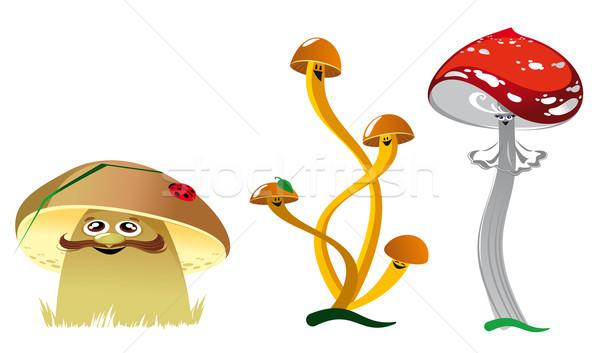 Vicces gombák csoport gombák növekvő tisztás Stock fotó © FidaOlga