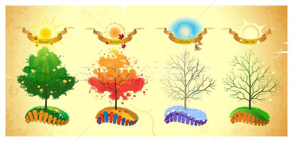 Summer, autumn, winter, spring Stock photo © FidaOlga