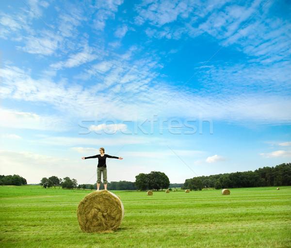 Постоянный катиться сено женщину Top Сток-фото © filmstroem