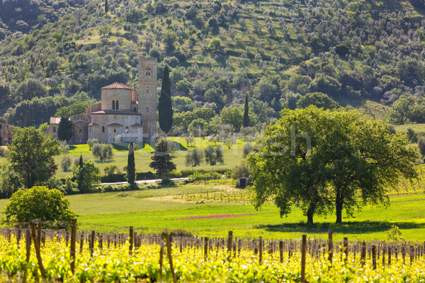Abbey of Sant'Antimo with vineyards, Montalcino, Tuscany, Italy Stock photo © fisfra