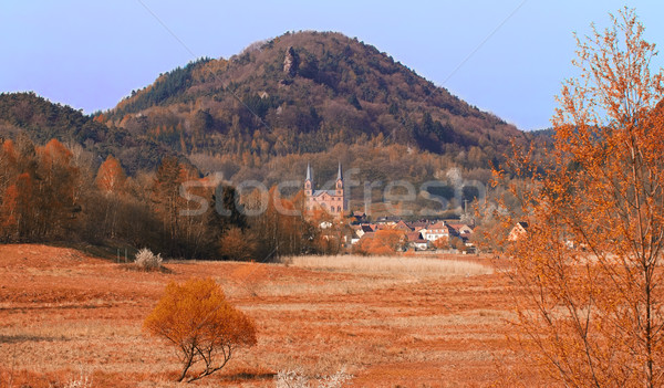 Landscape at fall in Pfaelzer Wald, Germany Stock photo © fisfra