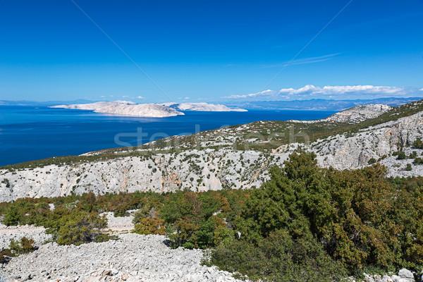 Deniz ada Hırvatistan gökyüzü su orman Stok fotoğraf © fisfra