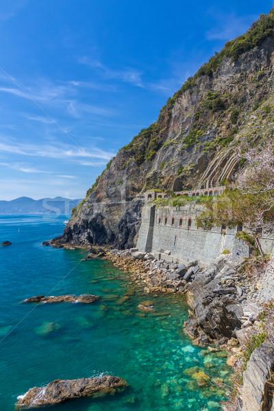 Coastline in Cinque Terre with Via Dell'Amore, Italy Stock photo © fisfra