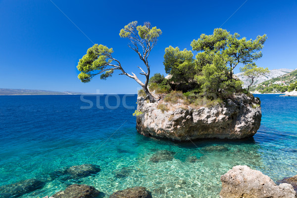 Croatian beach at a sunny day, Brela, Croatia Stock photo © fisfra