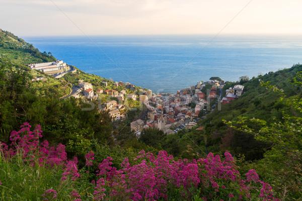 Manarola valley view, Cinque Terre, Italy Stock photo © fisfra