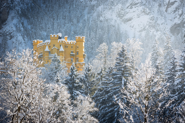 Hohenschwangau Castle in wintery landscape, Germany Stock photo © fisfra