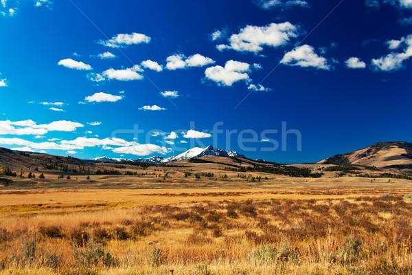Park völgy hegyek égbolt természet hó Stock fotó © fisfra