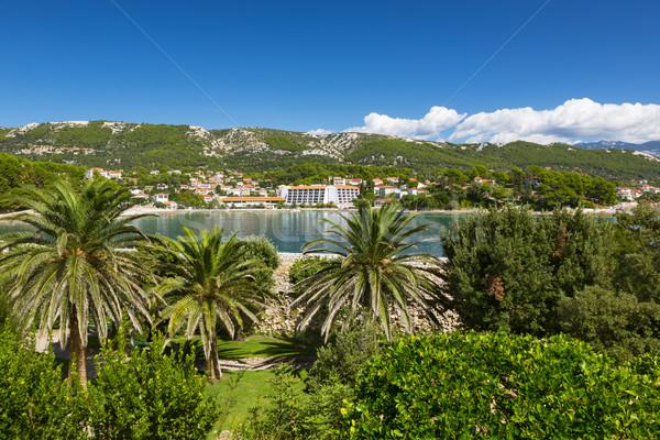 Coast at Adriatic Sea, Rab Island, Croatia Stock photo © fisfra