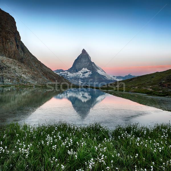 Tükröződés virágok Alpok Svájc hó zöld Stock fotó © fisfra