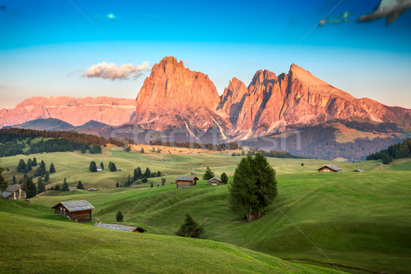 Seiser Alm with Langkofel Group in last sunlight, South Tyrol, I Stock photo © fisfra