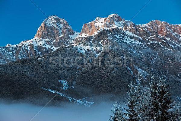 Mountain Range 'Steinernes Meer' in Alps at Dawn, Austria Stock photo © fisfra