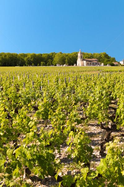 Bağ Fransa manzara alan kilise Stok fotoğraf © fisfra