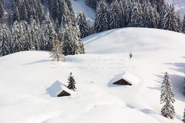 Deep snow in Alps, Berchtesgaden, Bavaria, Germany Stock photo © fisfra