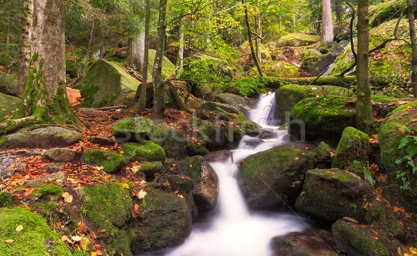 Gertelsbacher Waterfalls in autumn, Black Forest, Germany Stock photo © fisfra