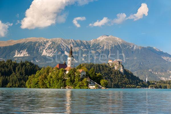 Isola lago Slovenia acqua foresta Foto d'archivio © fisfra
