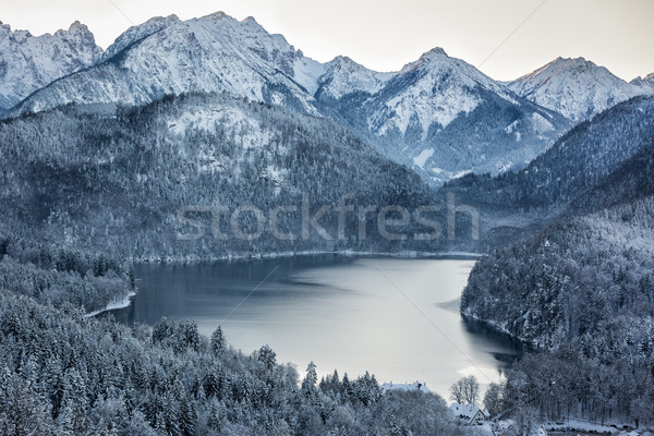 Schwansee at wintertime, Bavarian Alps, Germany Stock photo © fisfra