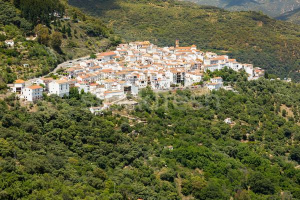 Andalusian village (Pueblos Blancos) in Sierra de las Nieves, Ma Stock photo © fisfra