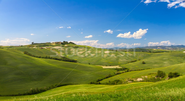 Hilly landscape with blue skies in Crete Senesi, Asciano, Siena, Italy Stock photo © fisfra